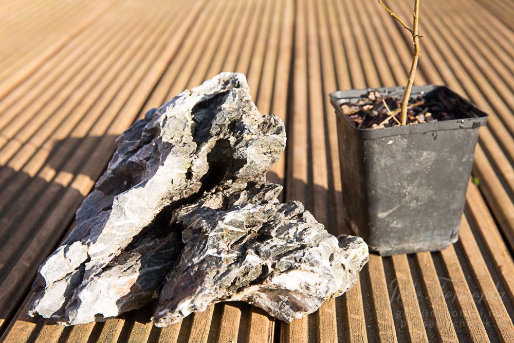 Wortel over rots beplanting